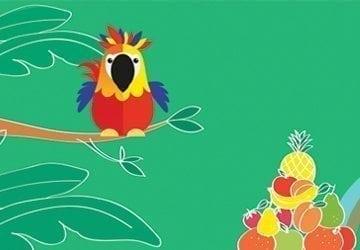 L'histoire de Coco le perroquet