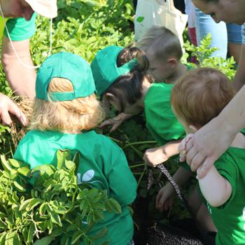 La cueillette est un moment propice au partage, entre les familles et les nouveaux amis.