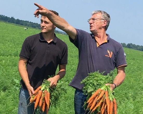 De l'art de cuire les carottes