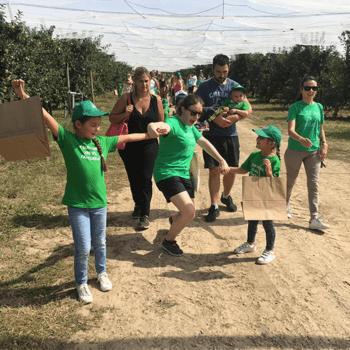 Les familles de curieux découvrent le chemin des vergers verdoyants.