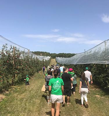 La cueillette des pommes, du 14 au 15 Septembre, chez Mme Biscond