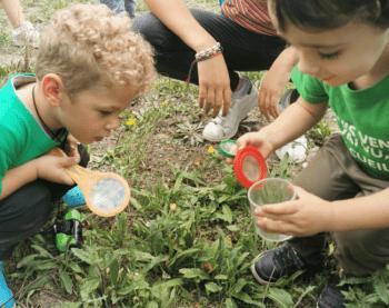 A la découverte de la biodiversité