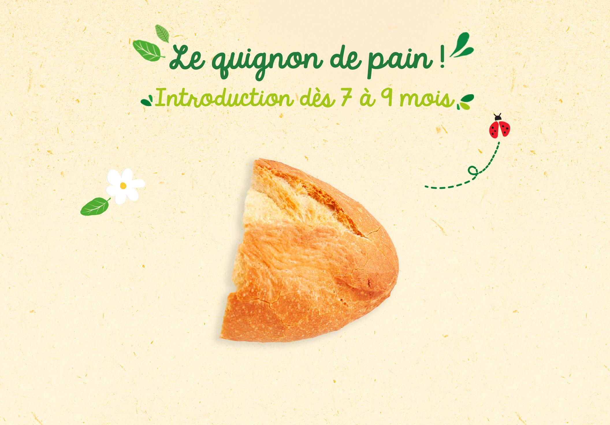 texture Quignon Pain