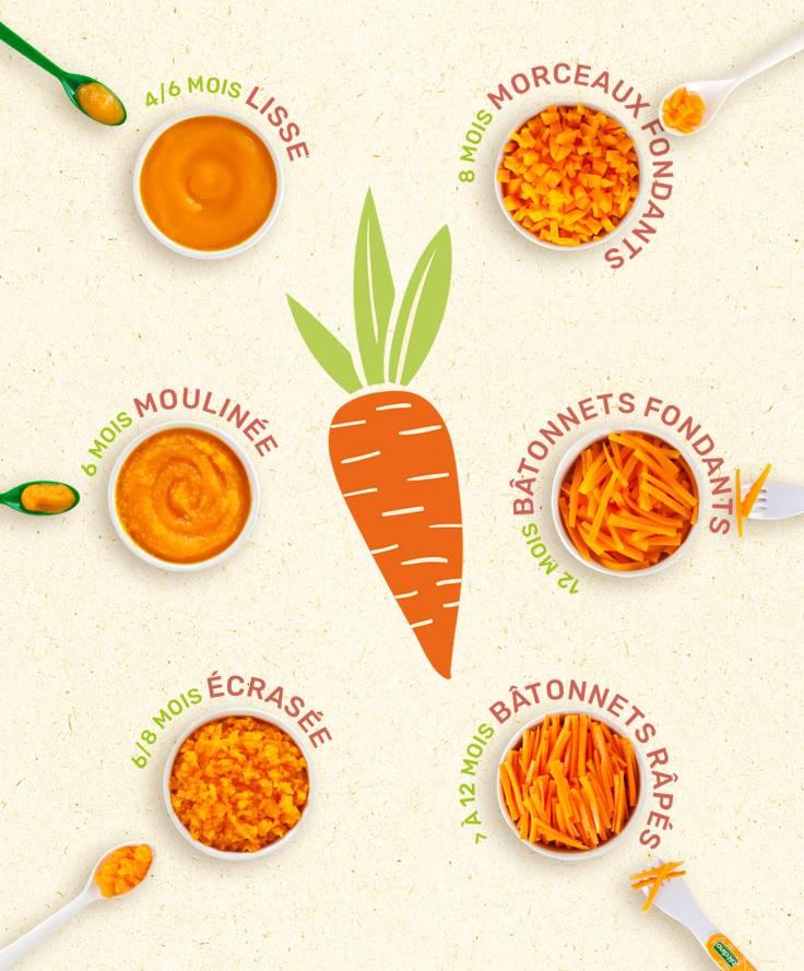 texture carottes